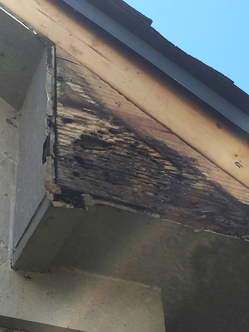 Wood near the roofline that must be repaired